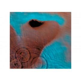 Meddle Pink Floyd LP - Envío Gratuito