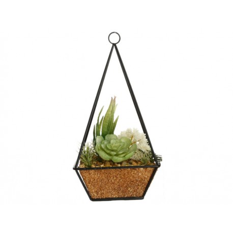 Flora Bunda Cactus Colgante Colgui Verde - Envío Gratuito